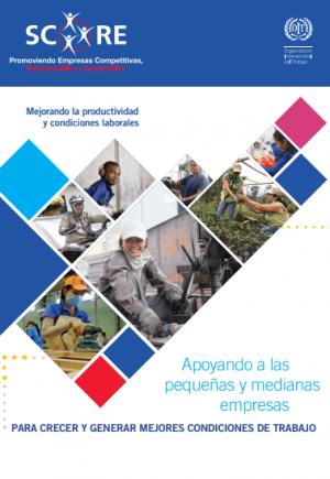 Brochure Proyecto SCORE